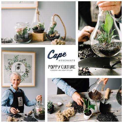Poppy2 Cape 01