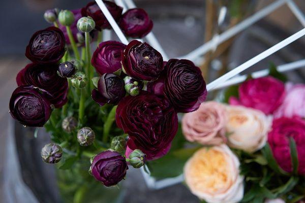 Close Up Florals